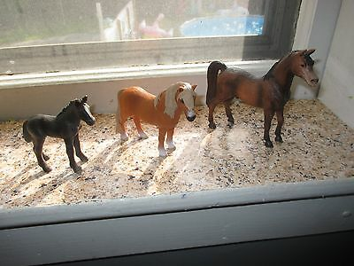 Nice Lot of 3 Schleich Horses, Foal to Young, Dated 2007-2010,  LOOK!