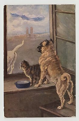 POSTCARD - artist signed (unknown), dog and cat at window