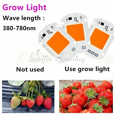 220V 20/30/50W COB LED Puce Phyto Lampe Gamme Complète LED Diode Plante