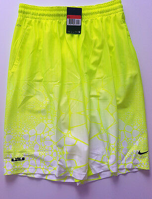 NIKE Performance LeBron Tamed AOP Basketballshort Hose Fitness Running NEU GR L