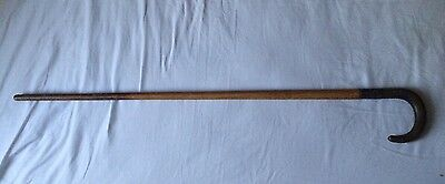 Antique Victorian Horn & Silver Collar Wooden Walking Stick Cane Vintage Wood