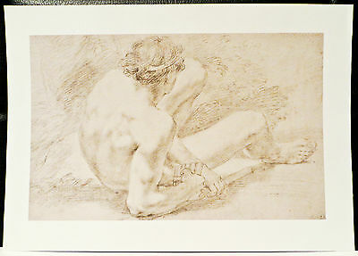 Male Nude Naked Man  Print Copy Of Antique Drawing Charcoal