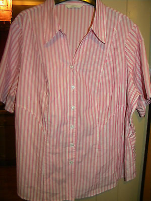 Ladies Pink Stripped  Short Sleeve Top Size Uk 14 From M&s