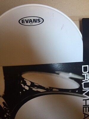 "Evans G14 Coated 13"" drum head"