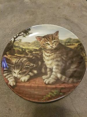 Terrace Cat collectable plate