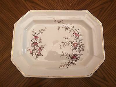 Antique HENRY ALCOCK & CO. Large 8 Sided Platter - Brown & Red Hawthorn Pattern
