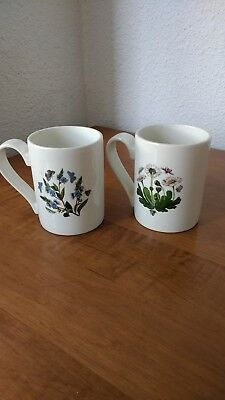 2 Portemerion Mugs Made in England Old Mark 1972 Botanical Daisy & Speedwell