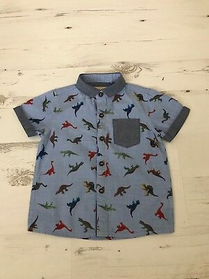 Next Boys Dinosaurs Shirt 9-12 Months