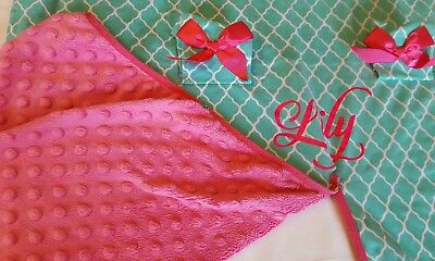 """CANOPY CARSEAT COVER Personalized """"Lily"""" Green/PINK Minky Infant EUC Baby Gift"""