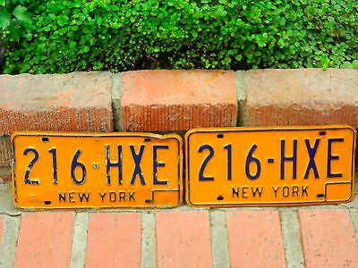 Vintage new york license plates