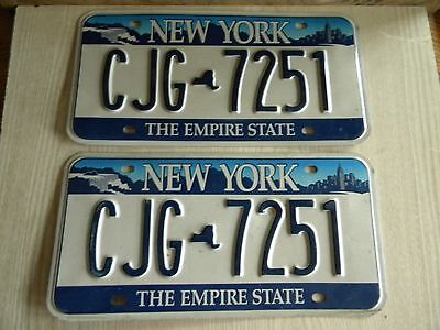 Vintage New York The Empire State Matching Pair License Plates CJG 7251,Aluminum