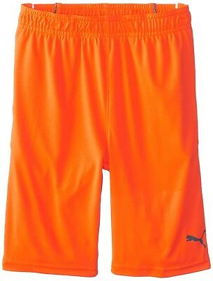 (Big Boys, Medium, Fire Orange) - PUMA Boys' Pure Core Short. Best Price