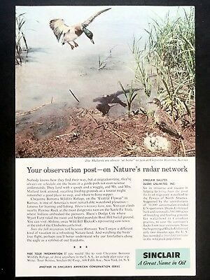 1958 Vintage Print Ad SINCLAIR MOTOR OIL Duck Flying Lake Grass Image
