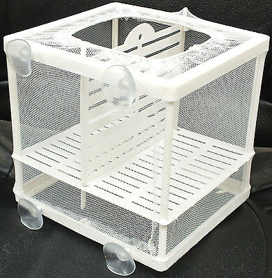 Aquarium Fish Tank Guppy Breeding Breeder Baby/Fry Net Trap Box Hatchery #BN-1