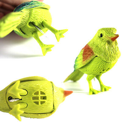 Interactive Pet Electronic Toy Talking Bird Intelligent voice Control For Kid