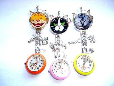 Vet Nurse Watch Student Carer Cat with Ears fish bird cat charms brooch colours