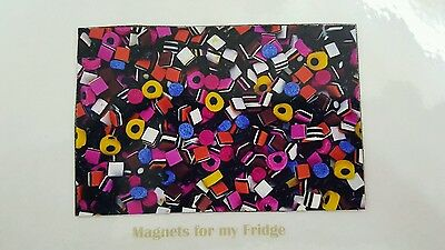 Lolly Sweet Confectionery Licorice Allsort Gloss Photo Fridge Magnet - M1