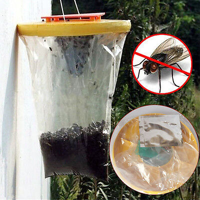 Top The Ultimate Red Drosophila Fly Trap Top Catcher Fly Wasp Insect Bug Killer