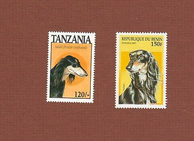 Saluki dog stamps set of 2 MNH