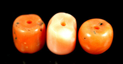 Lot of 3 pcs Ancient Yemenite Jewish bedouin Natural Coral Loose Bead 2.8 grs