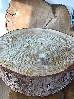 """18""""  (46cm) Rustic Log slice, 5"""" Thick Wooden Wedding cake stand, centerpiece"""