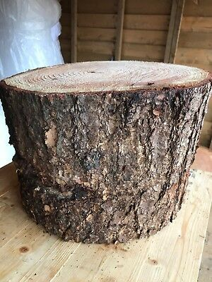 "Large 16"" Rustic log Stump/trunk Ideal Garden Stool or Feature, Woodland Wedding"
