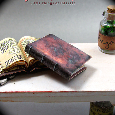 ESTHER'S GRIMOIRE SPELL BOOK Miniature Dollhouse 1:12 Illustrated Wizard Witch