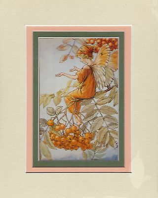 Papertole Kit with frame mats and backing board -Mountain Ash Fairy