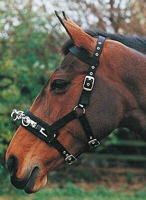 Hy Lunge Cavesson Black In Small Or Large For Horses Fully Adjustable On Head