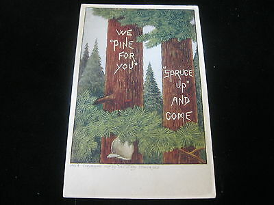Early 19th Century postcard we pine for you spruce up and come Denver Colo. 1907
