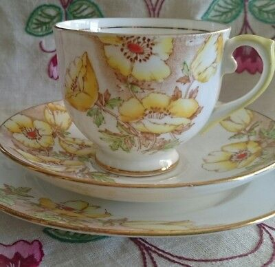 "Salisbury Crown China "" Anemone"" Trio- Cup, Saucer, Plate-Handpainted"
