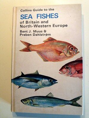 COLLINS GUIDE TO THE SEA FISHES OF BRITAIN & NORTH-WESTERN EUROPE, hb 1974