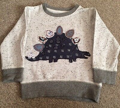 Next Baby Boys Appliqué Dinosaur Jumper Sweatshirt 12-18 Months