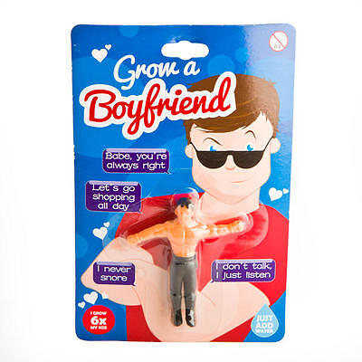 Grow a Boyfriend Novelty Gift Humorous, Funny Gag, Bridesmaids Divorce Gift