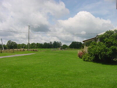 Turn Key WV Mountain Top 130 Acre Farm