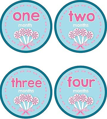 Personalised Monthly Baby Stickers, Milestone Stickers, Baby Shower Gift_G015