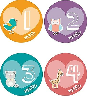 Personalised Monthly Baby Stickers, Milestone Stickers, Baby Shower Gift_G034
