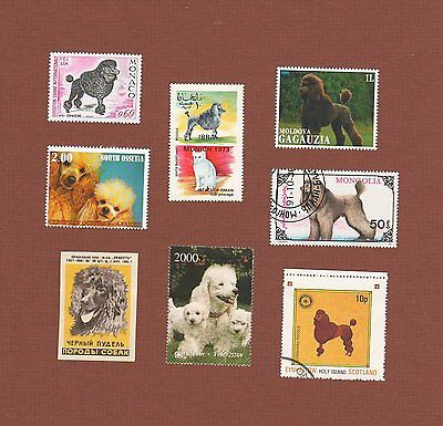Poodle dog stamps, match box cover, set of 8