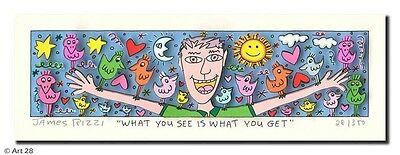 "Original James Rizzi 3D Bild ""What you see is what you get"" NEU mit Zertifikat"