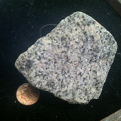 SW Florida Paleolithic granite type hand Axe.  Prepared with custom fittings