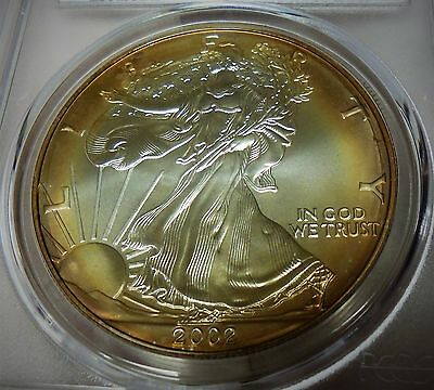 2002 American Silver Eagle Pcgs Ms68 Lustrous Golden Toned Gem