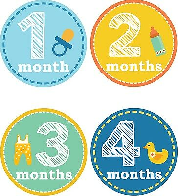 Personalised Monthly Baby Stickers, Milestone Stickers, Baby Shower Gift_B024