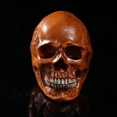 Resin Skull Figurine Human Skeleton Head Decor Medical Teaching Antique 4 Types