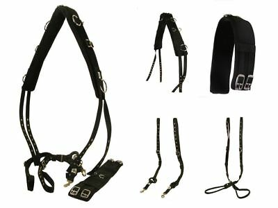 Shires Equestrian Nylon Horse Pony Training Leadrope Lunging Cavesson Lunge Line