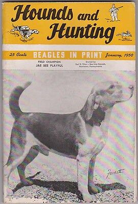 HOUNDS AND HUNTING Magazine January 1950, Beagles & Beagling H&H
