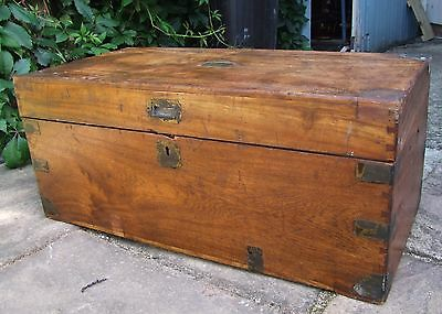 Late 19Th Century Camphor Wood Box /chest