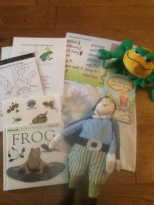 The Princess and the frog story sack and teaching /child minding resource