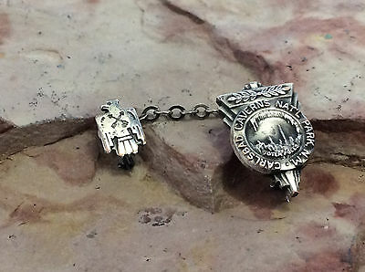 Vintage Carlsbad Caverns National Park New Mexico Chained Lapel Pin