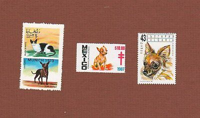 Chihuahua dog MNH stamps and seal, set of 3