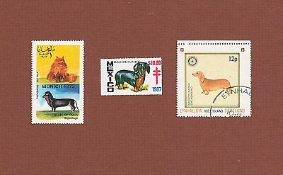 Smooth Dachshund dog stamps set of 3